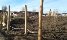 Balancierelement aus europäischer Robinie Natur-Generationen-Spielplatz Witternförden